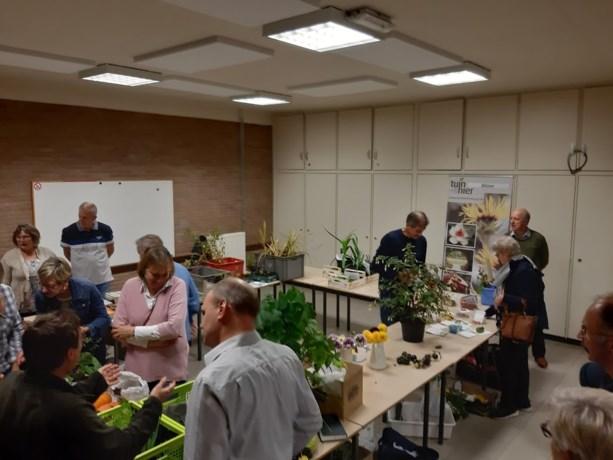 Plantjes ruilen bij Tuinhier Bilzen